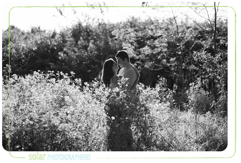Beautiful engagement picture taken in Kansas City at the James A. Reed wildlife refuge.
