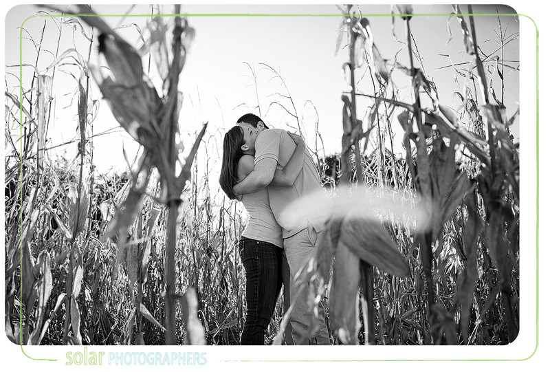 Couple snuggling in a field of corn in Kansas City.