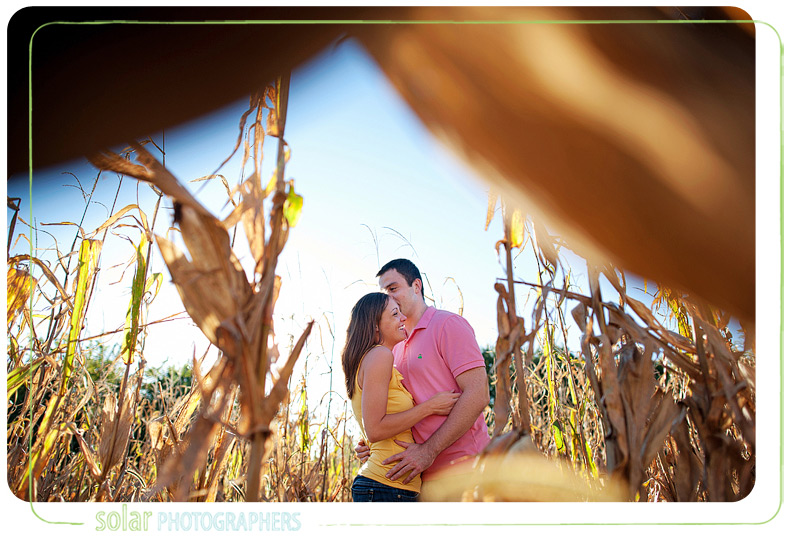 Couple madly in love in a corn field.