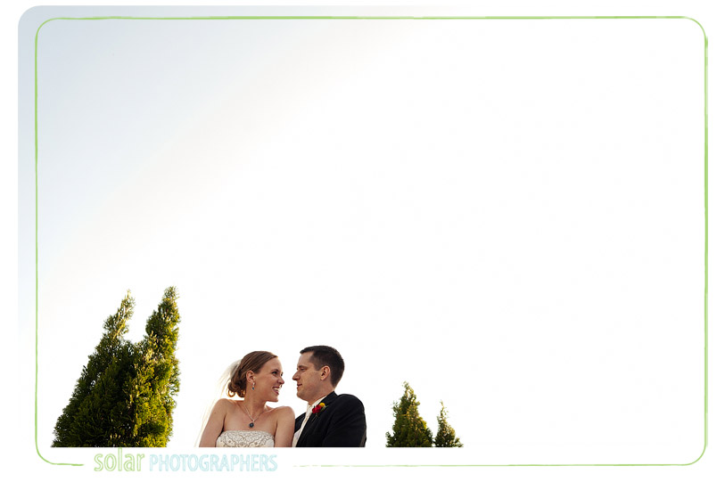 Beautiful portrait of the bride and groom between the trees.