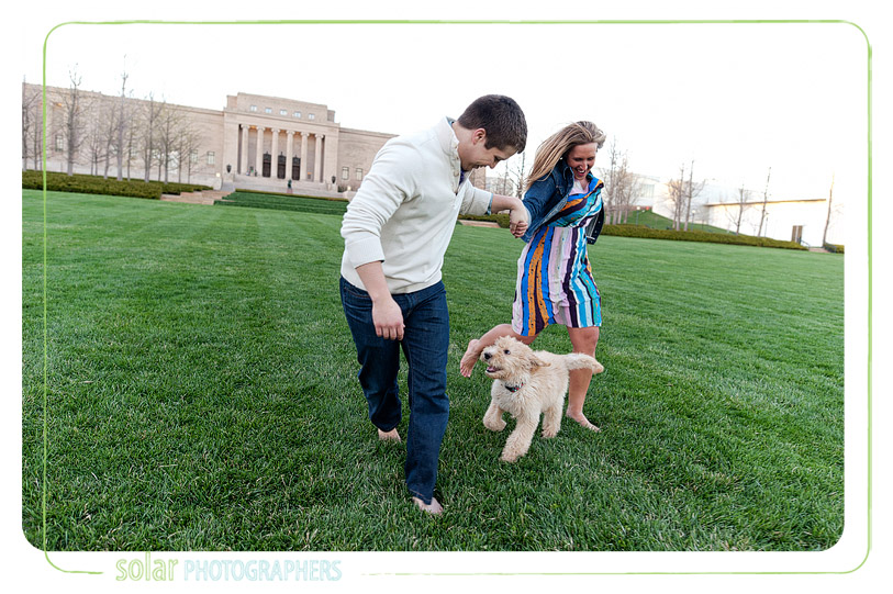 labradoodle-puppy-running-on-the-nelson-lawn-in-kansas-city