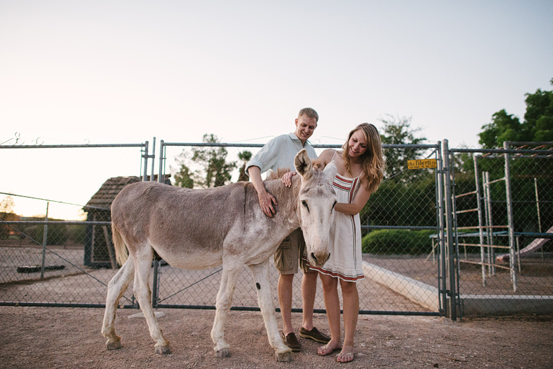 Couple loving on their donkey