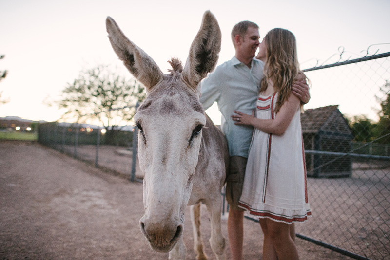Couple portrait with their donkey.