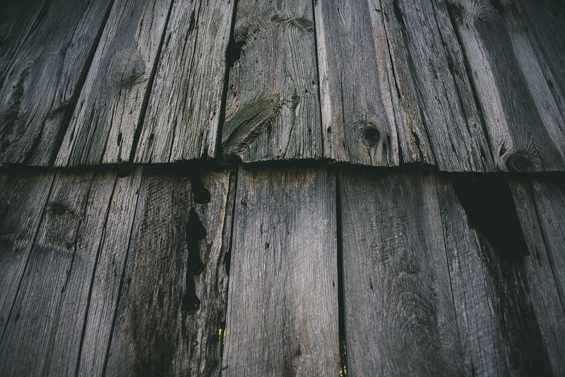 Sweet texture on an old barn.
