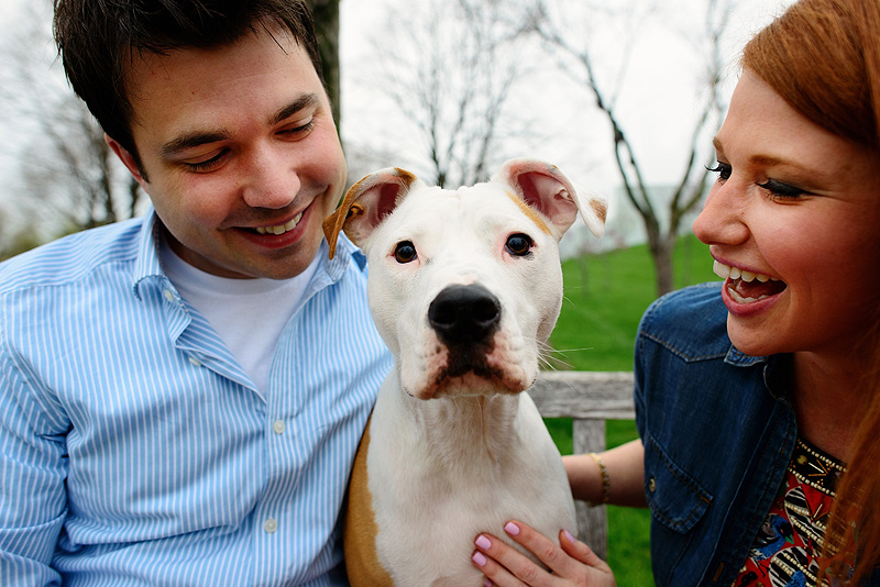 Fun portrait of a couple with their dog.